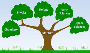 Branches of Science | Good Science